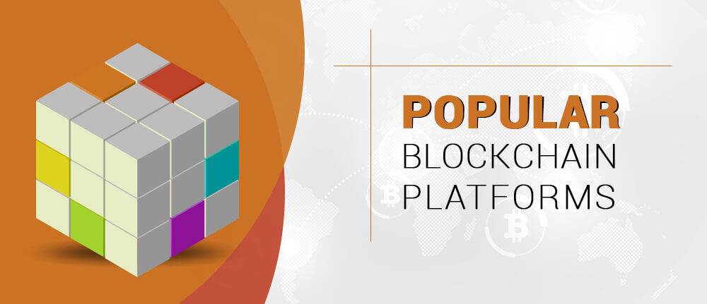 Popular Blockchain Platforms
