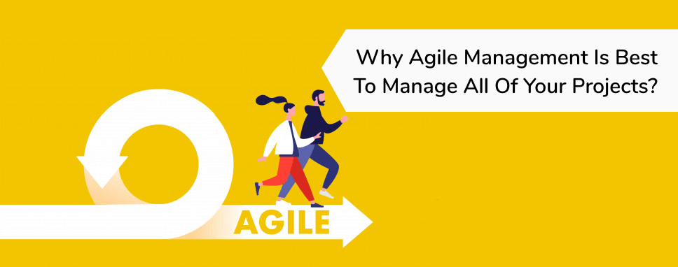 why_agile_management_is_best